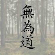 لغو اولین دوره مسابقات وو وی تائو سال ۱۳۹۴