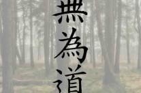 اولین دوره مسابقات وو وی تائو در سال ۱۳۹۴
