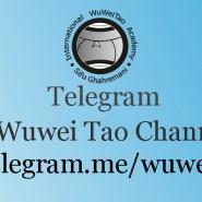 راه اندازی کانال تلگرام سازمان وو وی تائو