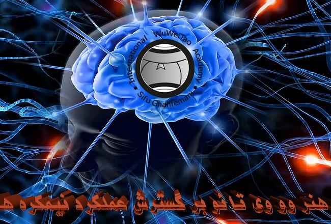 تاثیر هنر وو وی تائو بر گسترش عملکرد نیمکره های مغز