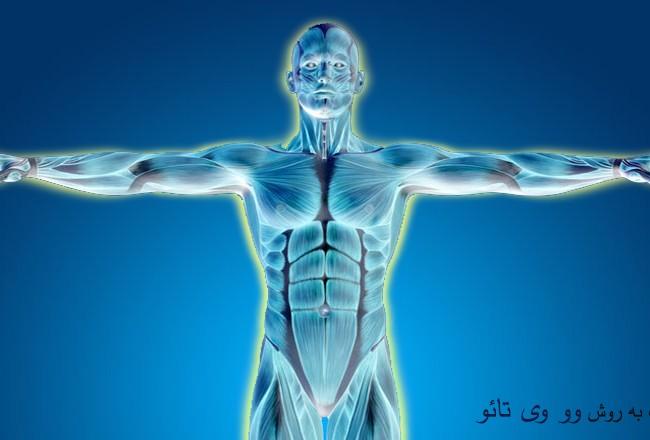 فیزیولوژی چی گونگ