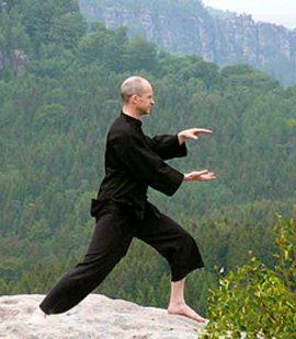 Wuwei Tao - Chi Gung(Qi Gung)