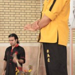 IWTA - Seminar QOM 16-12-92-17