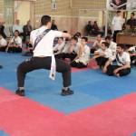 IWTA - Seminar QOM 16-12-92-49