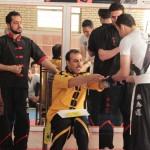 IWTA - Seminar QOM 16-12-92-62