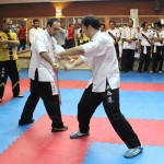 wuweitao-seminar 7-6-1393-41