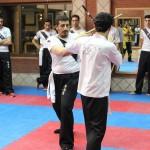 wuweitao-seminar 7-6-1393-42