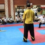 wuweitao-seminar 7-6-1393-44