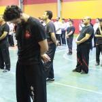 wuweitao-seminar-7-9-1393-15