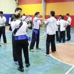 wuweitao-seminar-7-9-1393-25