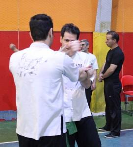 wuweitao-seminar-8-12-1393-14
