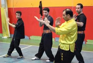 wuweitao-seminar-8-12-1393-23