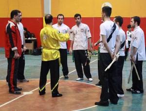 wuweitao-seminar-8-12-1393-3