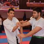 seminar13azar94 (7)