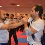 seminar13azar94 (9)