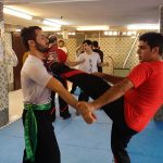seminar10azar96(20)
